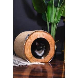 PARKANDBENCH in Cat Trees & Scratch Posts