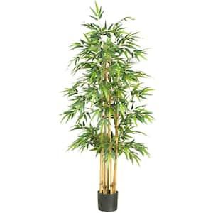 Indoor in Artificial Trees