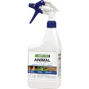 Squirrels in Animal Repellents