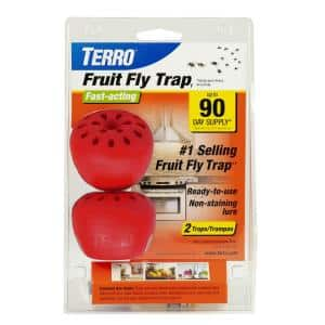 Fruit Fly Traps