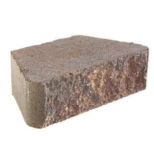 Individual in Retaining Wall Blocks