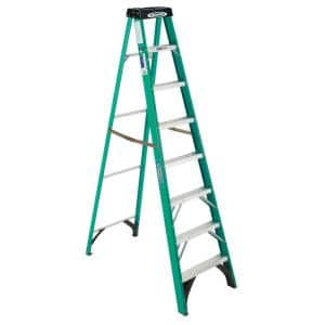 Ladder Rating: Type 2 - 225 lbs.