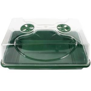 Trays & Domes