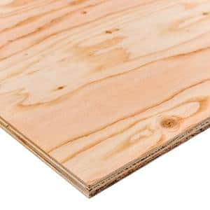 Sanded Plywood in Plywood