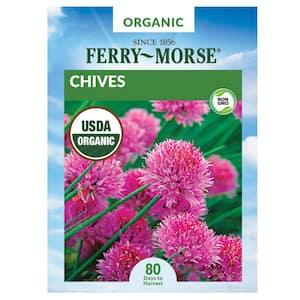 Herb in Organic Vegetable Seeds