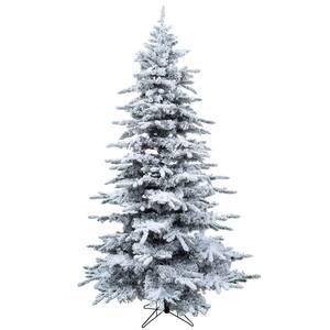 Unlit Christmas Trees