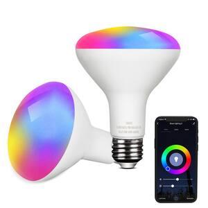 Light Bulb Shape Code: BR30