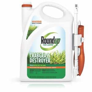 Spray in Weed Killer