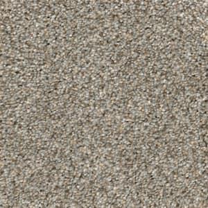 Gray in Indoor Carpet
