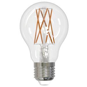 Light Bulb Shape Code: A19 in LED Light Bulbs