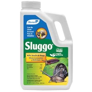 Slug Bait