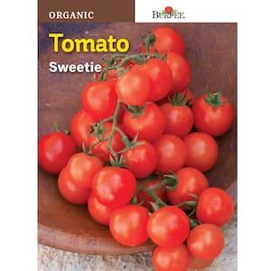 Burpee in Organic Vegetable Seeds