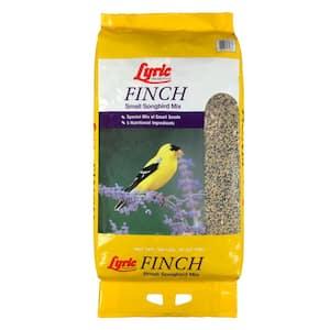 Finch in Bird Seed & Food