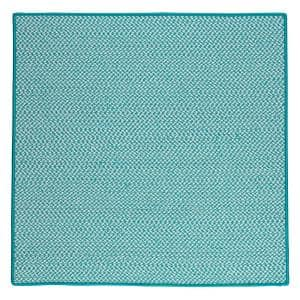 Approximate Rug Size (ft.): 10 X 10