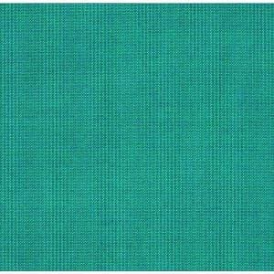 Teal in Outdoor Cushions