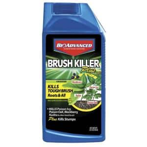 Spray in Weed & Grass Killer