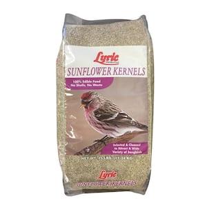 Bird Seed & Food