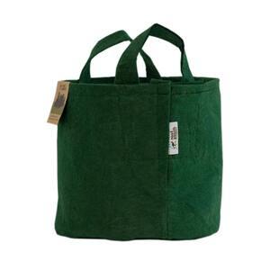 Outdoor in Grow Bags