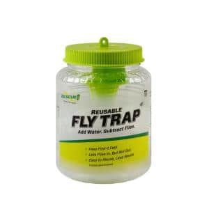 Insect Traps
