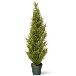 National Tree Company Artificial Plants