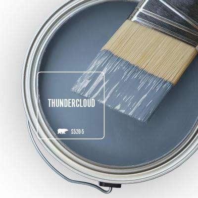 8 oz. #S520-5 Thundercloud Eggshell Enamel Interior Paint and Primer in One Sample