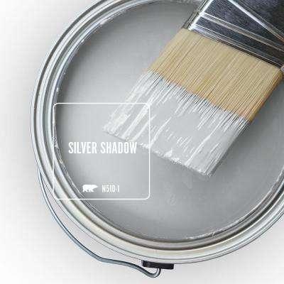 N510-1 Silver Shadow Paint