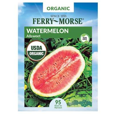 Watermelon All-Sweet Organic Seed