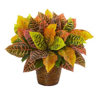 17 in. Garden Croton Artificial Plant in Basket (Real Touch)