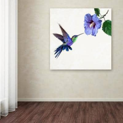 """18 in. x 18 in. """"Humming Bird"""" by The Macneil Studio Printed Canvas Wall Art"""