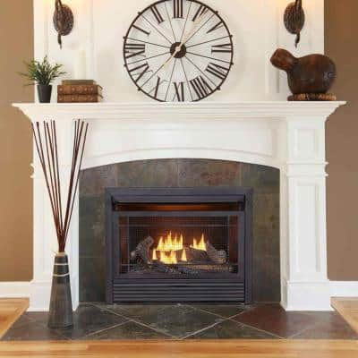 29 in. Ventless Dual Fuel Fireplace Insert with Remote Control
