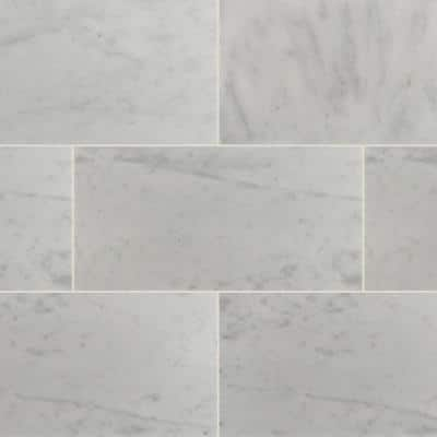 Take Home Tile Sample - Greecian White 12 in. x 24 in. Polished Marble Floor and Wall Tile - 4 in. x 4 in