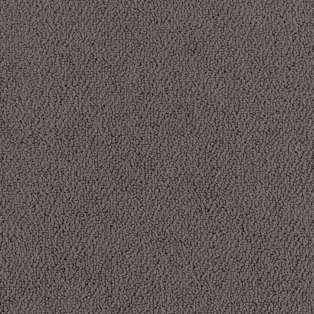 Lifeproof Lower Treasure Color Flint Rock Pattern 12 Ft Carpet 0547d 24 12 The Home Depot