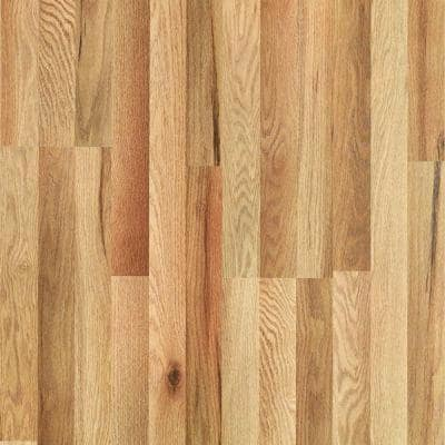 Pergo XP Haley Oak Laminate Flooring - 5 in. x 7 in. Take Home Sample