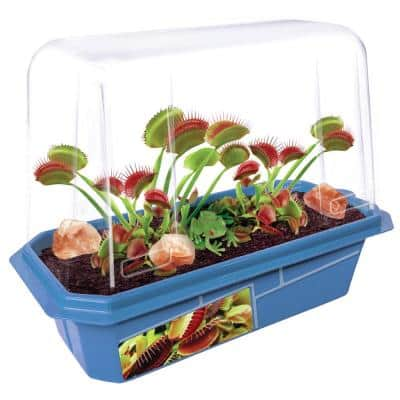 Miniature Worlds Blue Frightening Flytraps Indoor Garden Terrarium Indoor Garden Seed Starter Kit