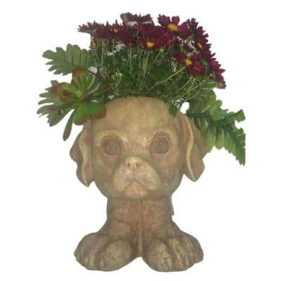 12 in. Antique White Muttley the Dog Muggly Planter Statue Holds 4 in. Pot