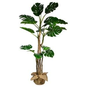 72 in. Tall Monstera Artificial Faux Decor with Burlap Kit
