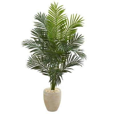 Indoor 5.5 ft. Paradise Artificial Palm Tree in Sand Colored Planter