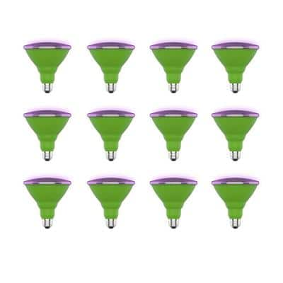16-Watt Equivalent PAR38 Medium E26 Non-Dimmable Indoor and Outdoor Full Spectrum Plant Grow LED Light Bulb (12-Pack)