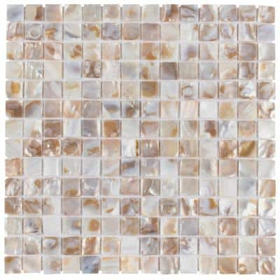 Take Home Tile Sample - Conchella Square Natural 6 in. x 6 in. Natural Shell Mosaic