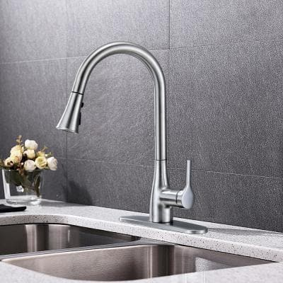 Classic Series Single-Handle Standard Kitchen Faucet in Chrome