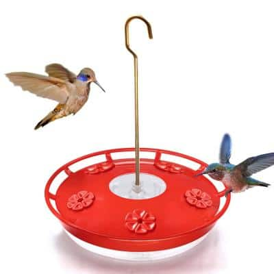 12 oz. Red Hummingbird Dish Feeders for Outdoors