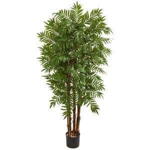 Indoor 5.5 ft. Parlour Artificial Palm Tree