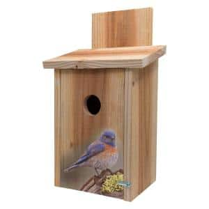Decorative Blue Bird on Stump Design Cedar Blue Bird House