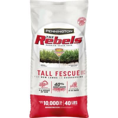 The Rebels 40 lbs. Tall Fescue Grass Seed Blend