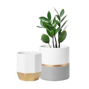 Modern Golden Detailing Cylinder and Octagon Plant Pot set