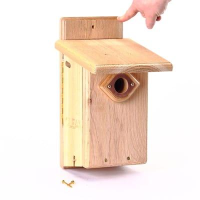 Ultimate Bluebird House