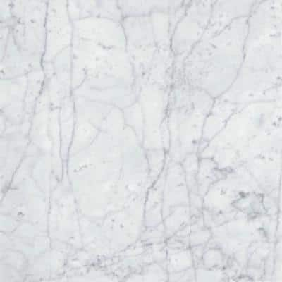 Marble Bianco Gioia Honed 17.99 in. x 17.99 in. Marble Floor and Wall Tile (2.25 sq. ft.)