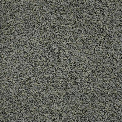 Toulon - Color Riverbirch Indoor/Outdoor Texture Gray Carpet