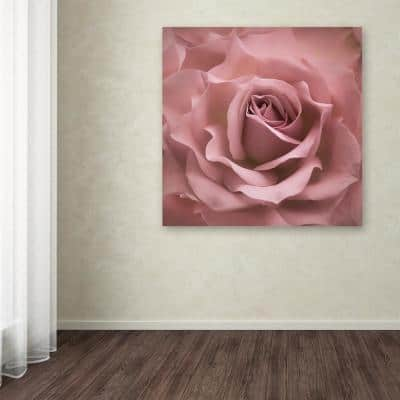"""35 in. x 35 in. """"Misty Rose Pink Rose"""" by Cora Niele Printed Canvas Wall Art"""