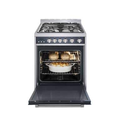 24 in. 2.7 cu. ft. Gas Range with Convection in Stainless Steel